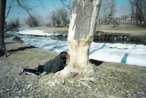 60 Beaver Man