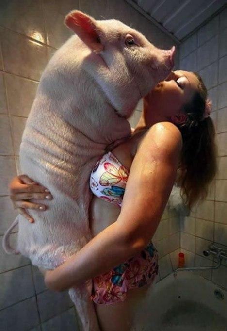 79 Piggy Bath