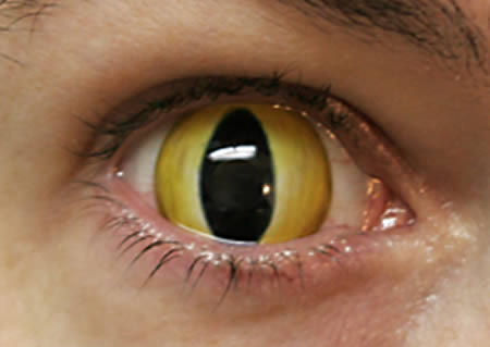 a96806_a503_snake-eye